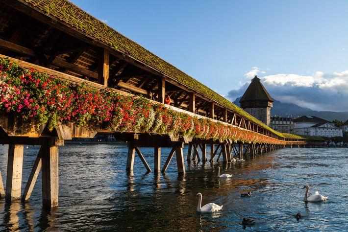 Datant du 14e siècle, le Kapellbrücke en bois figure parmi les plus anciens ponts couverts d'Europe.