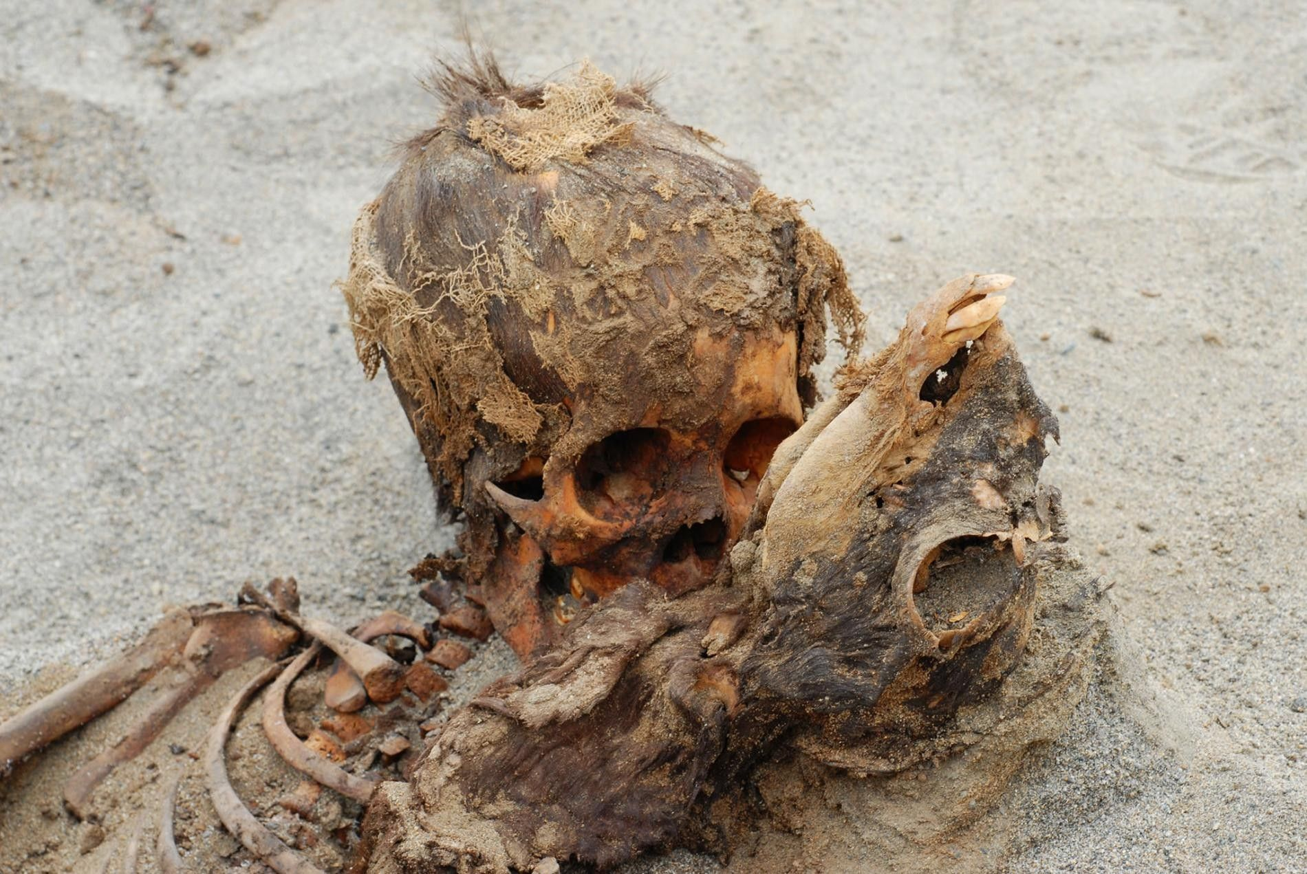 Victimes d'un rituel sacrificiel, un enfant (à gauche) et un bébé lama (à droite) faisaient partie ...