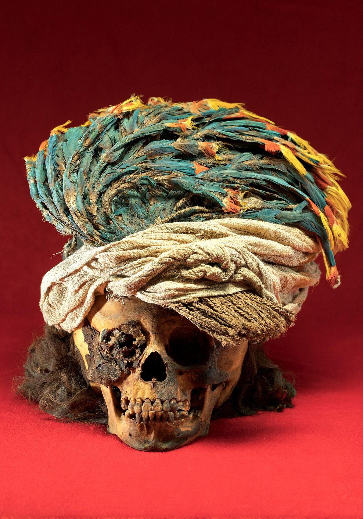 Une coiffe en plumes d'ara surmonte le crâne d'un enfant sacrifié dont les cheveux arrivaient aux ...