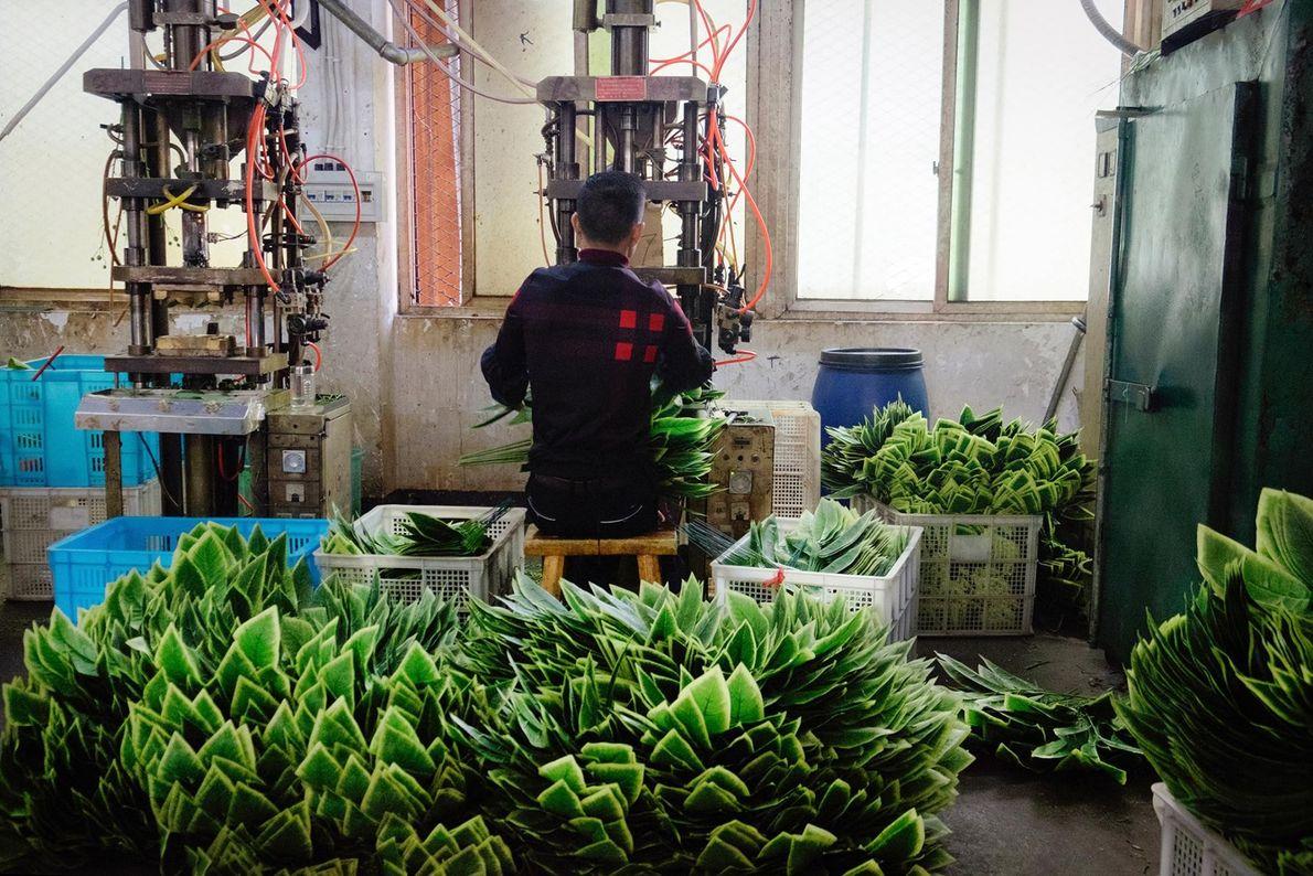 Un ouvrier dans une usine fabriquant des plantes artificielles.