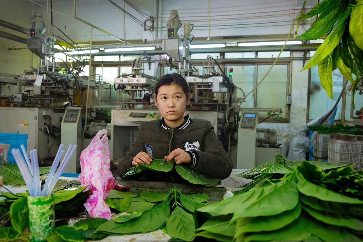 Dans une usine produisant des plantes artificielles, Hua Li trie des feuilles en plastique.