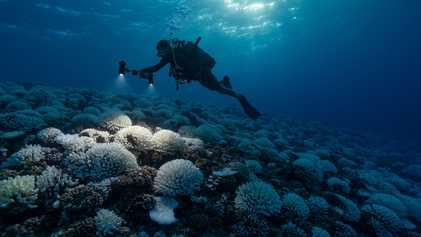 Le changement climatique précipite la planète vers un dangereux point de non-retour