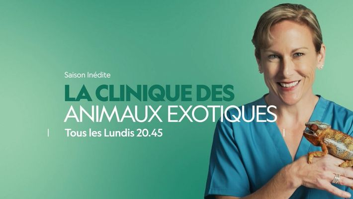 La Clinique des animaux exotiques | Bande annonce