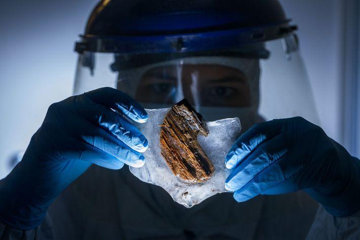 Frankie West, expert en criminalistique, examine des échantillons de bois provenant des cales du navire dans ...