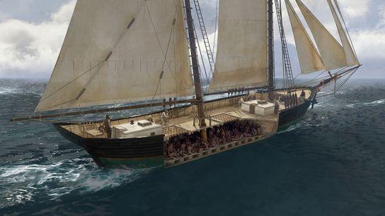 109 esclaves africains ont survécu au cruel voyage long de six semaines entre l'Afrique de l'Ouest ...