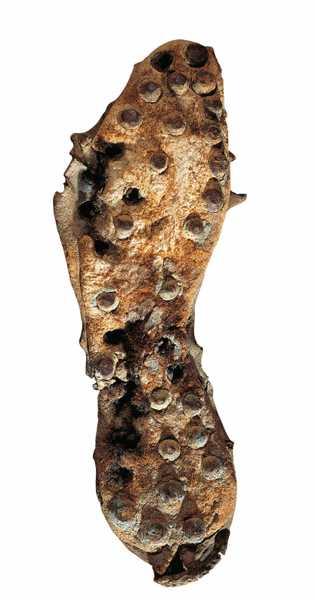 Les caligae sont des sandales montantes en cuir dotées de clous en fer ou en cuivre ...