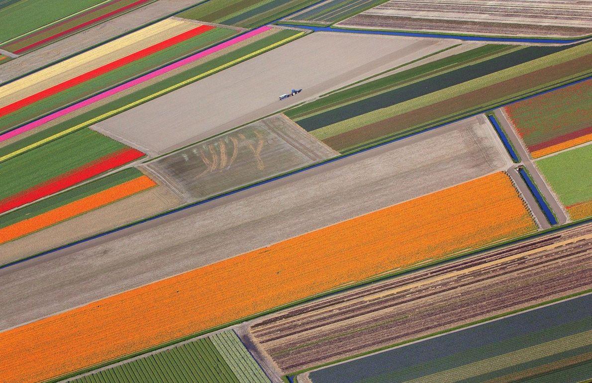 Un polder au nord-est des Pays-Bas.