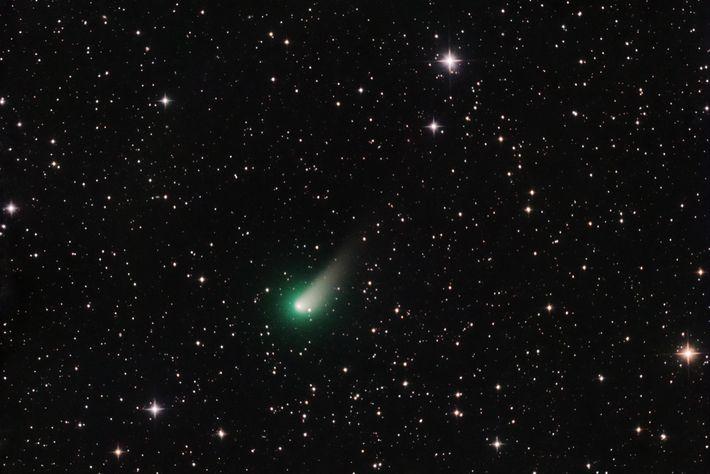 comet_johnson