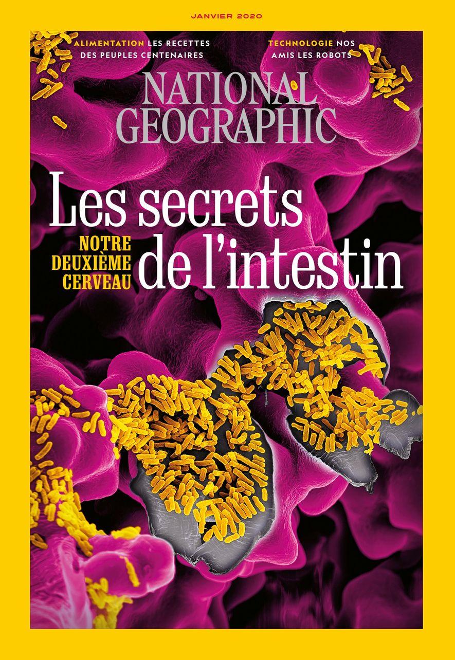 Magazine National Geographic de janvier 2020 : les secrets de l'intestin, notre deuxième cerveau