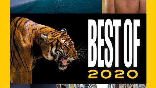Sommaire du magazine National Geographic du mois d'août 2020 : Best of 2020