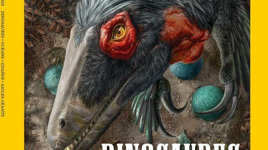 Magazine National Geographic du mois de novembre 2020 :  Le nouveau portrait des dinosaures