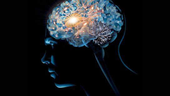 La dépendance modifie le cerveau de manière insidieuse, mais les personnes dépendantes à l'alcool et aux ...