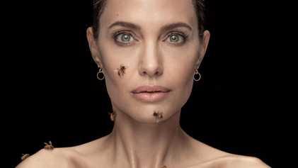 Entretien exclusif : Angelina Jolie prend la défense des abeilles et des apicultrices