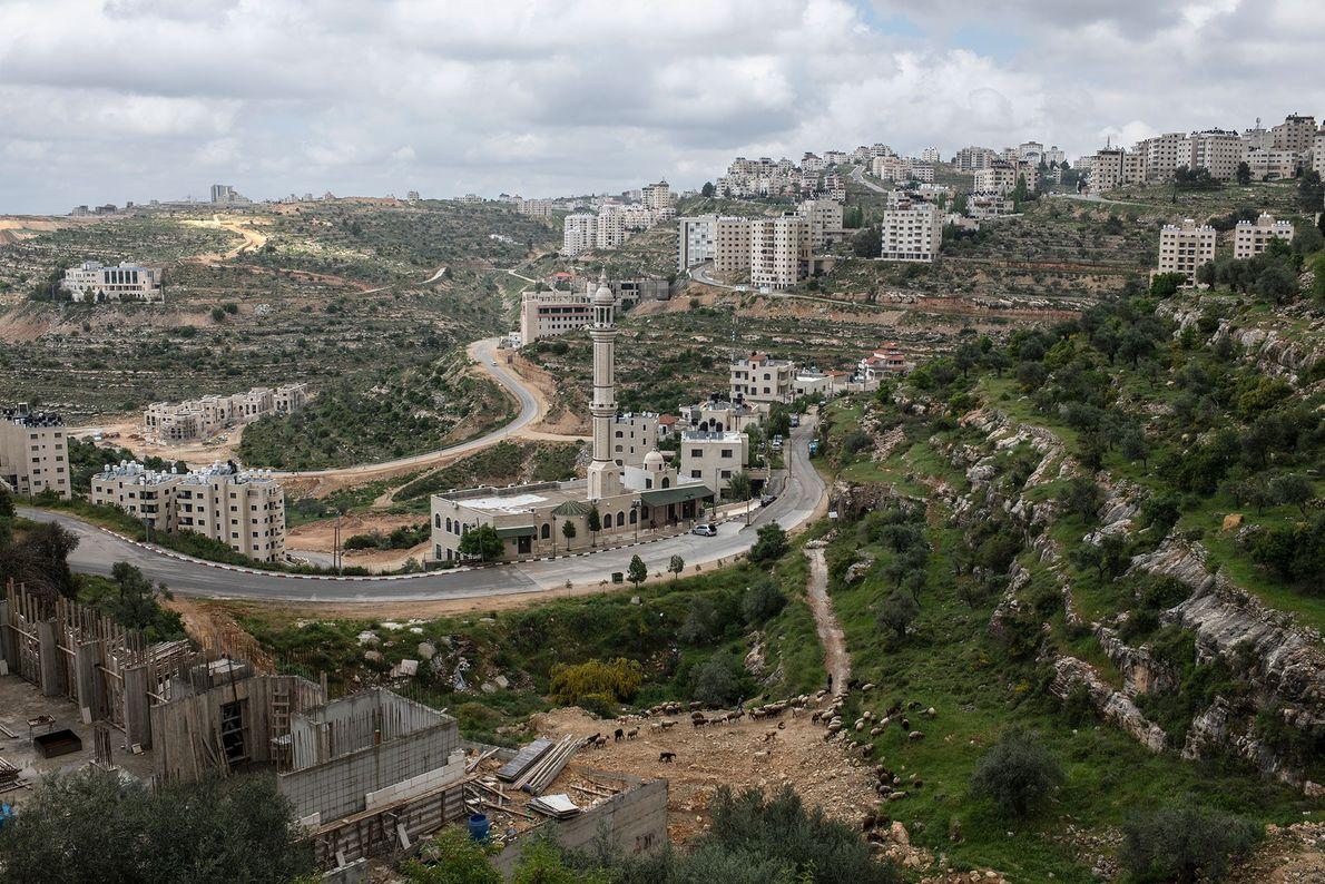 En Cisjordanie, d'ordinaire en pleine effervescence durant le Ramadan, il règne un silence sépulcral. Les mosquées ...