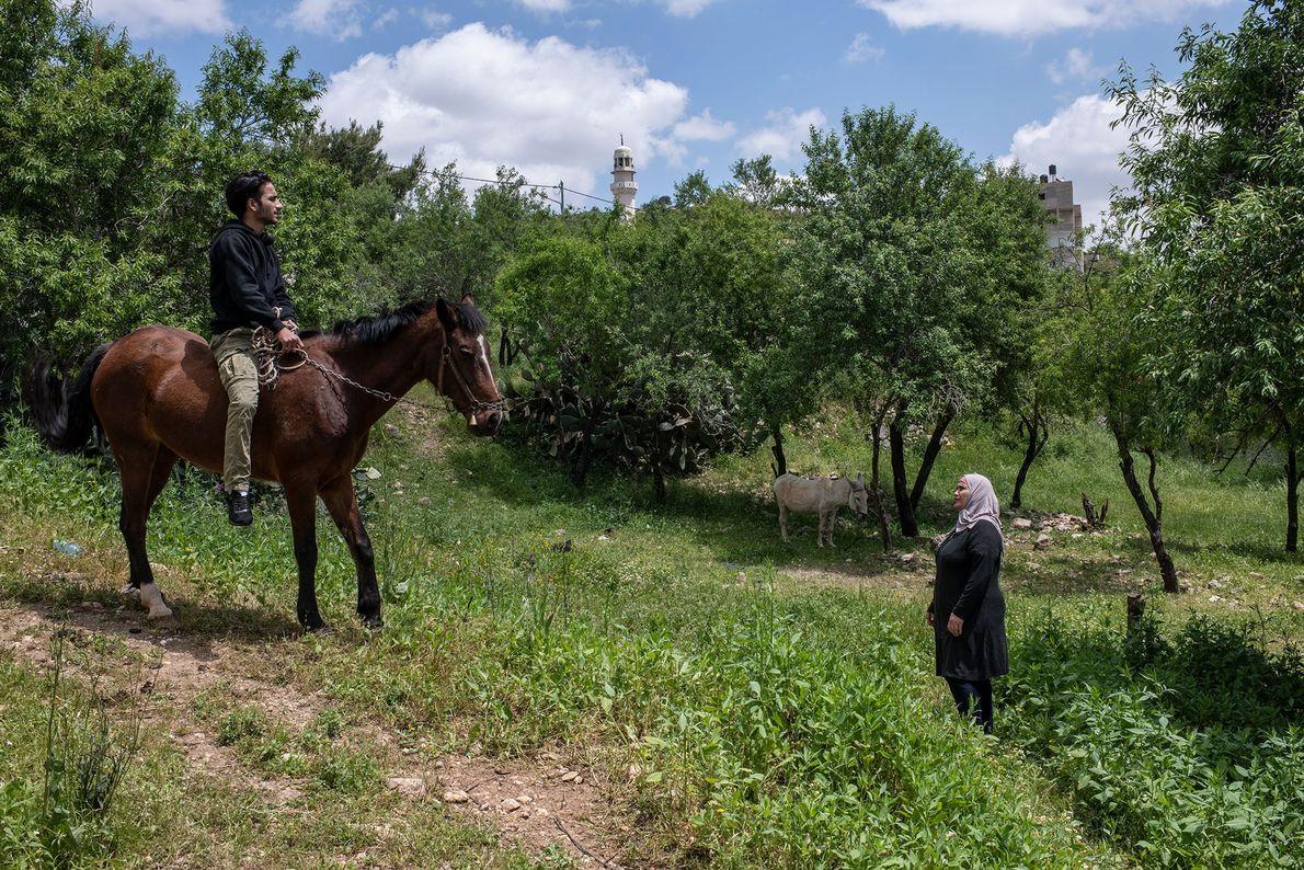Tanatra, surnommée « Oum Jihad » (Mère de Jihad) dans le petit village d'Im Safa, est femme de ...