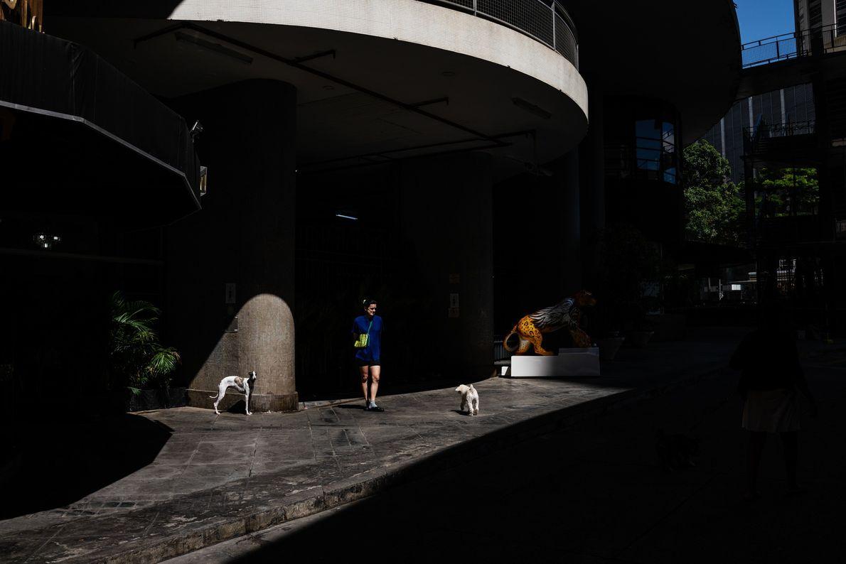 Une résidente promène ses chiens près de l'entrée du Copan. Bien qu'il y ait peu d'espaces verts ...