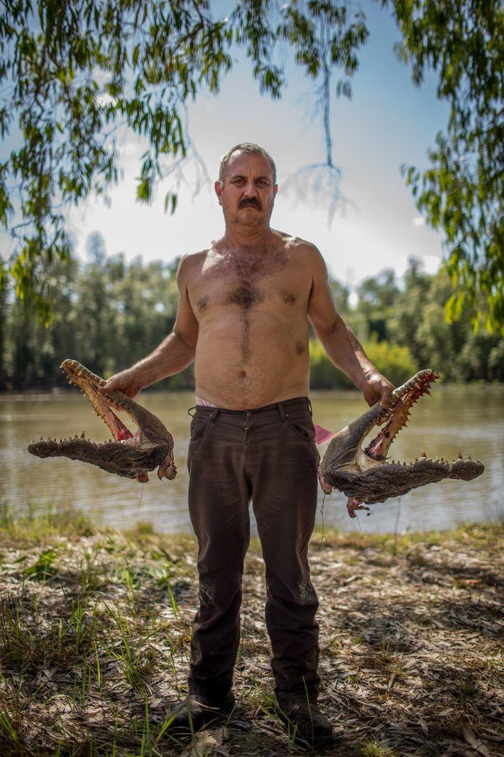 Roger Matthews porte dans ses mains les têtes de deux crocodiles marins qu'il a capturés dans ...