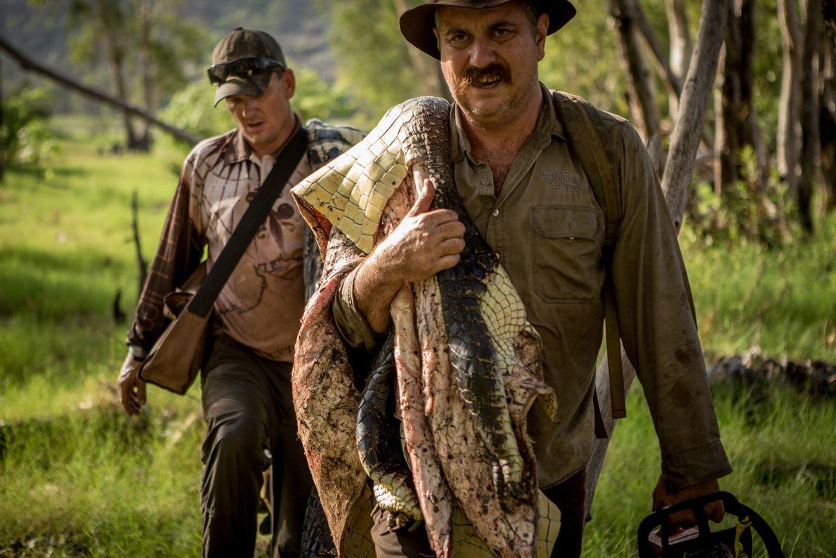 Roger Matthews (au premier plan) et Aaron Rodwell portent la peau d'un grand crocodile marin qu'ils ...