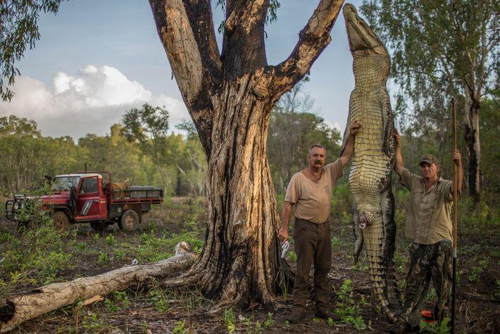 Dans le Territoire du Nord, en Australie, Roger Matthews (à gauche) et Aaron Rodwell se tiennent ...