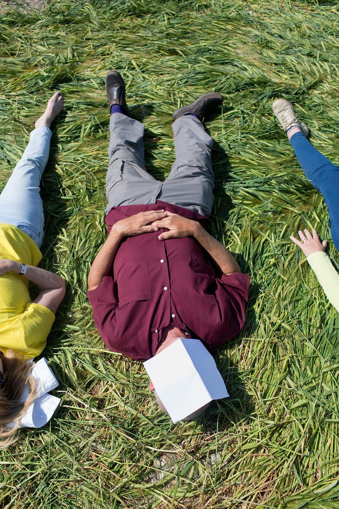 Des touristes s'allongent dans un agroglyphe du Dorset.