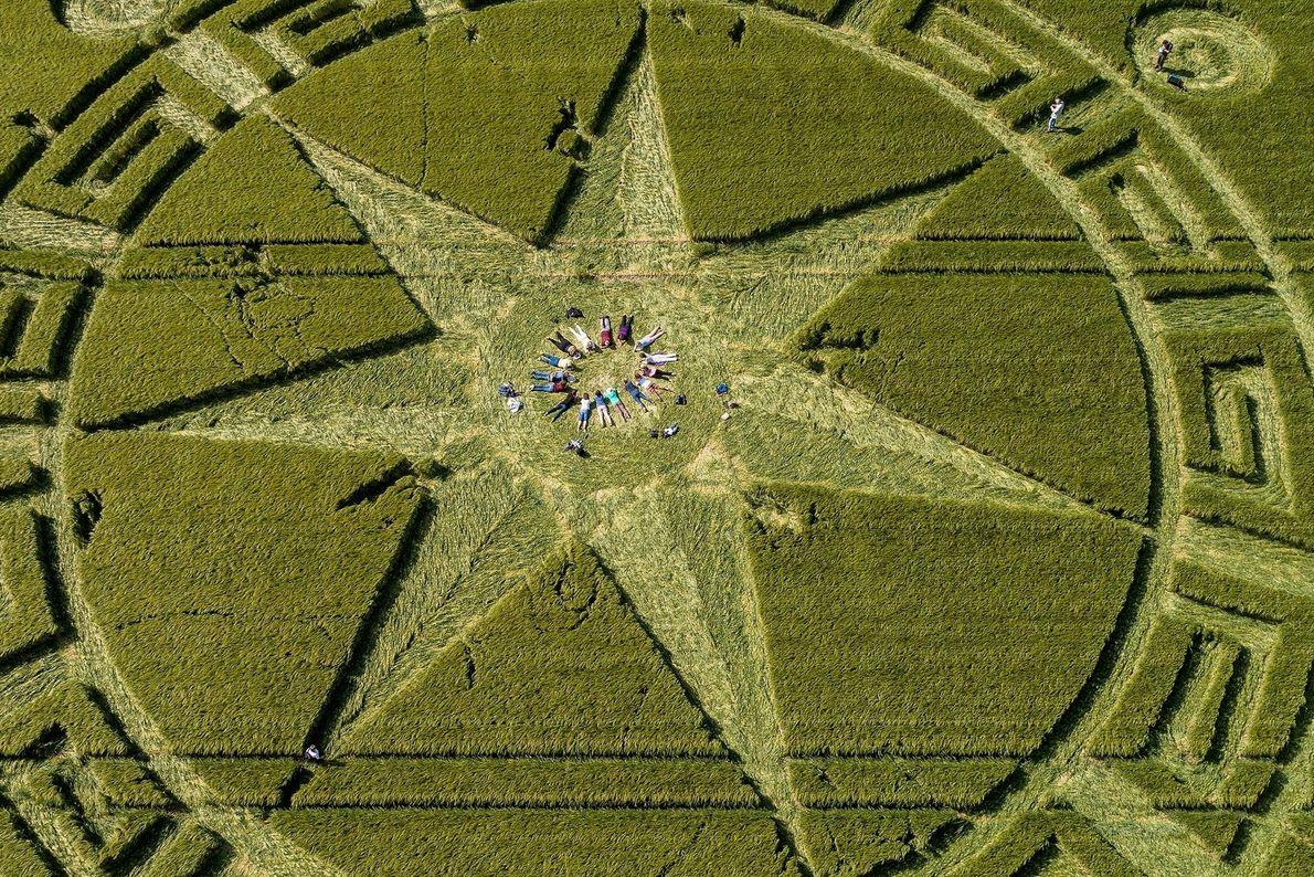 Dans le Dorset, des passionnés d'agroglyphes s'allongent au centre d'une de ces œuvres pour un rituel.