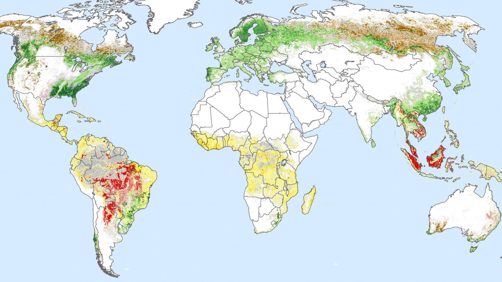 Carte mondiale de la déforestation entre 2001 et 2015. En rouge, la part liée à l'industrie ...