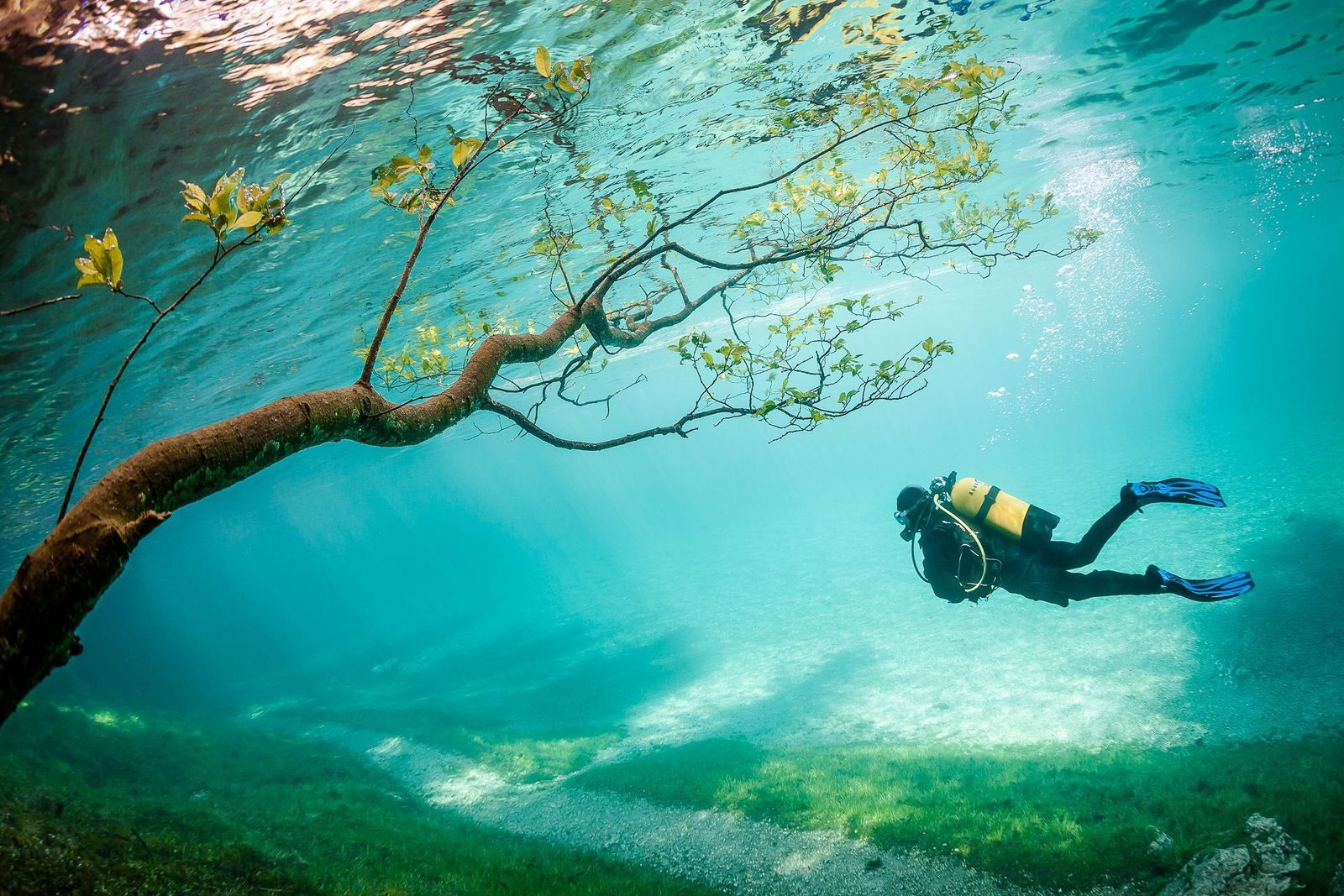 Comment rejoindre la communauté de photographes de National Geographic