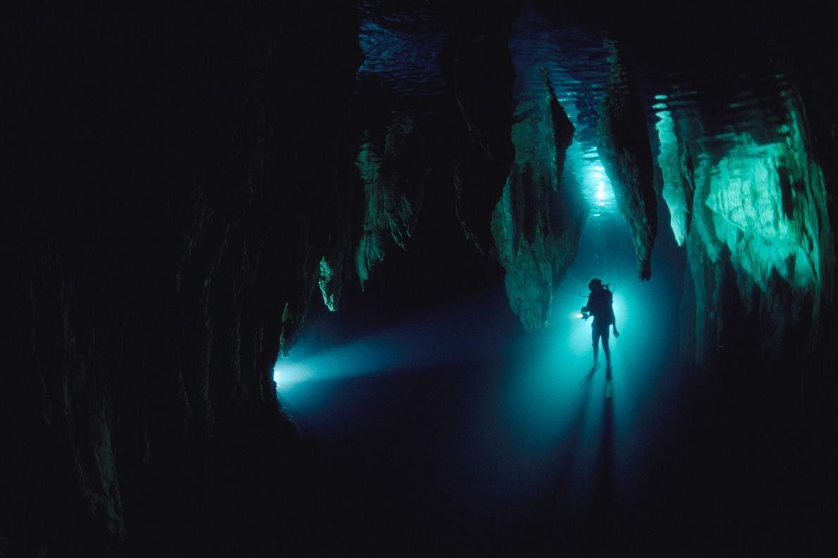 Dans la grotte Chandelier, à Palau, en Micronésie, un plongeur se profile. Bien que l'exploration de ...