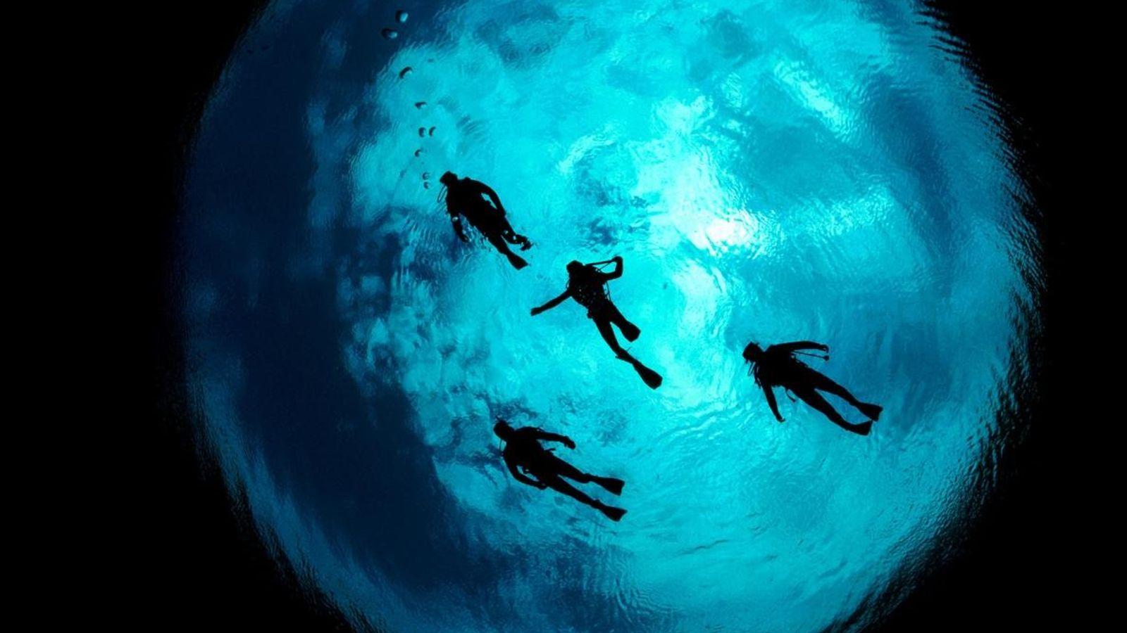 Quatre plongeurs descendent dans les dolines calcaires d'Ewens Pond, au sud du mont Gambier, en Australie.