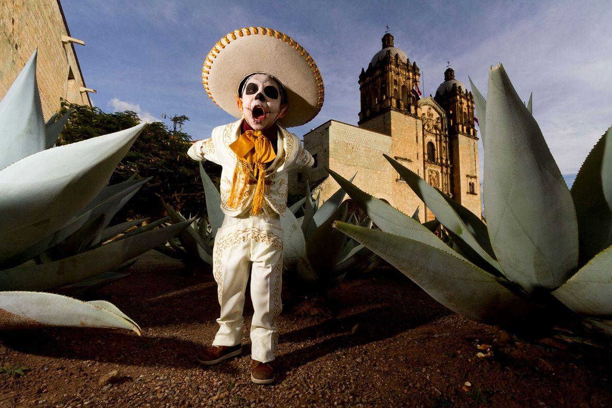 Un enfant déguisé en squelette cowboy, ou charro, se balade à travers les rangées de plantes ...
