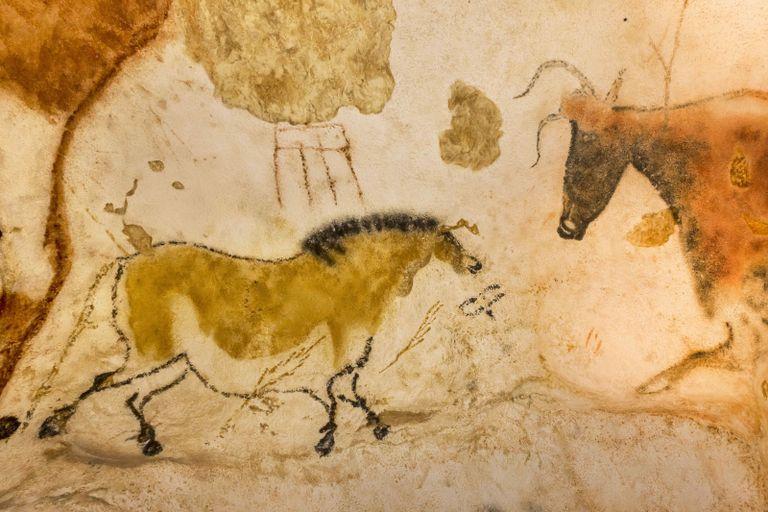 Les Plus Anciennes Peintures Rupestres Seraient L œuvre De Neandertaliens National Geographic