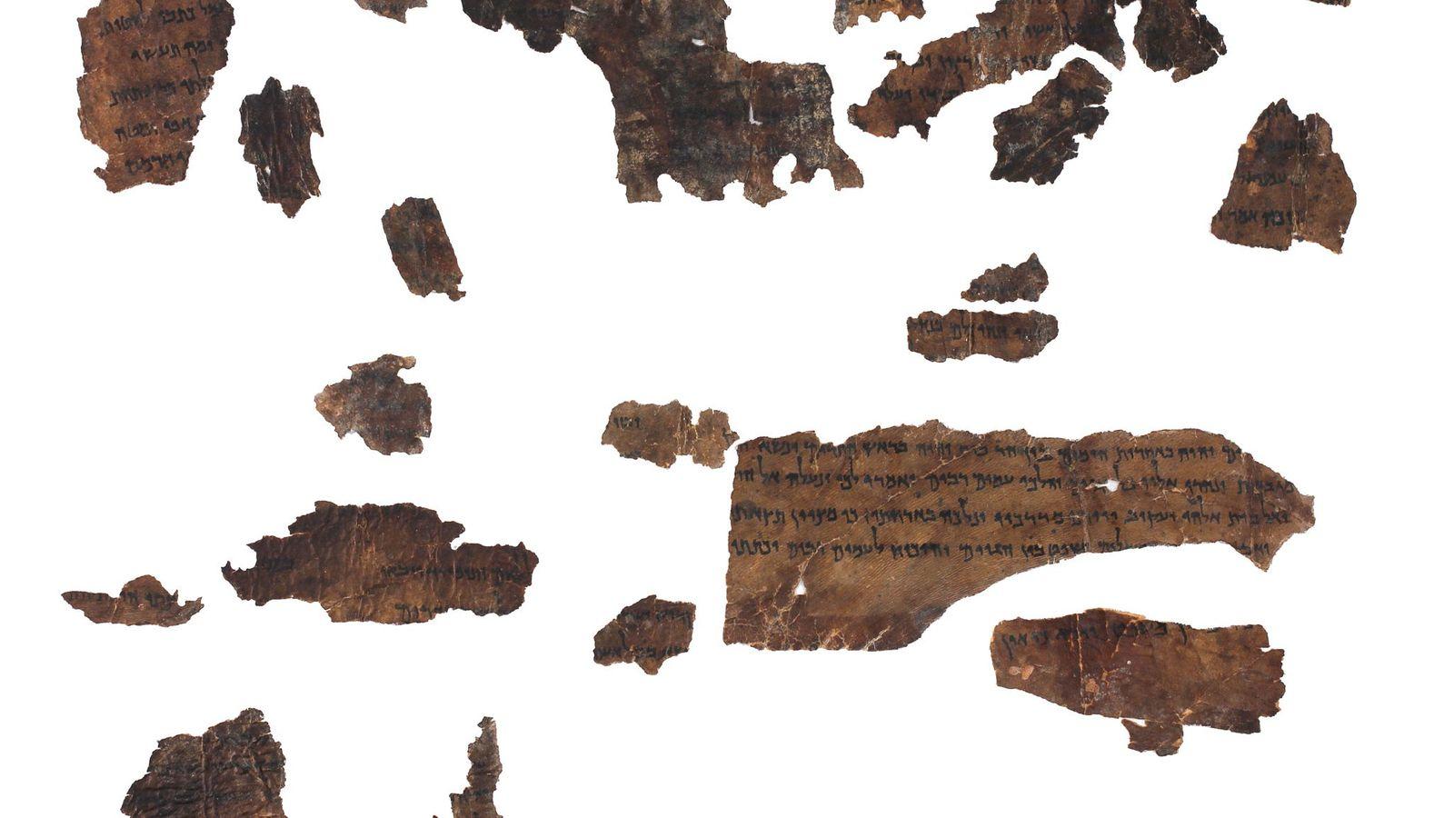 Des chercheurs ont extrait de l'ADN animal de fragments vieux de 2000ans, notamment ceux ci-dessus provenant ...