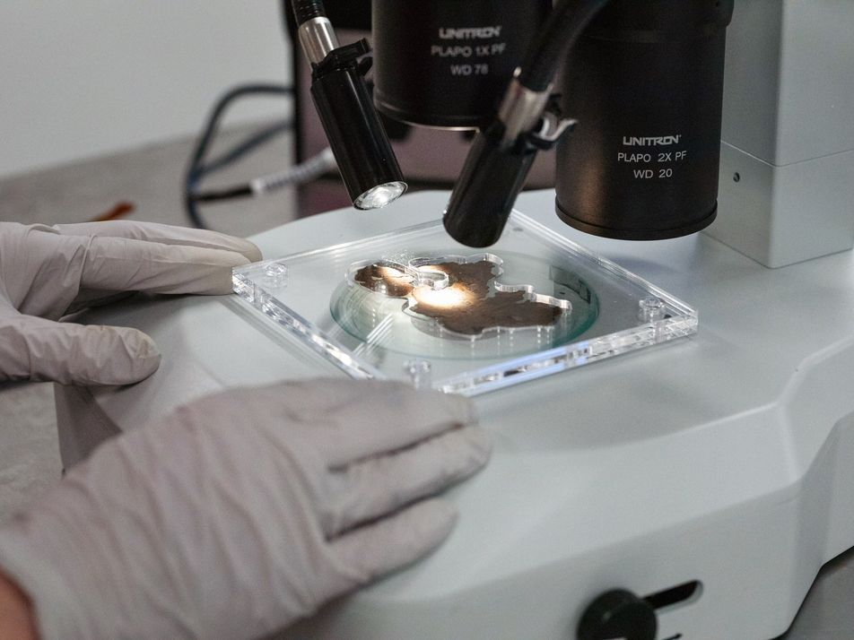 En images, l'analyse des faux manuscrits de la mer Morte