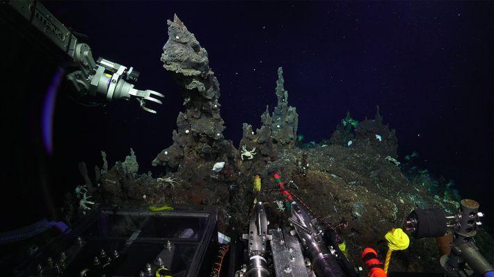 Un véhicule télécommandé s'apprête à prendre un échantillon de cheminées hydrothermales situées en eaux profondes.