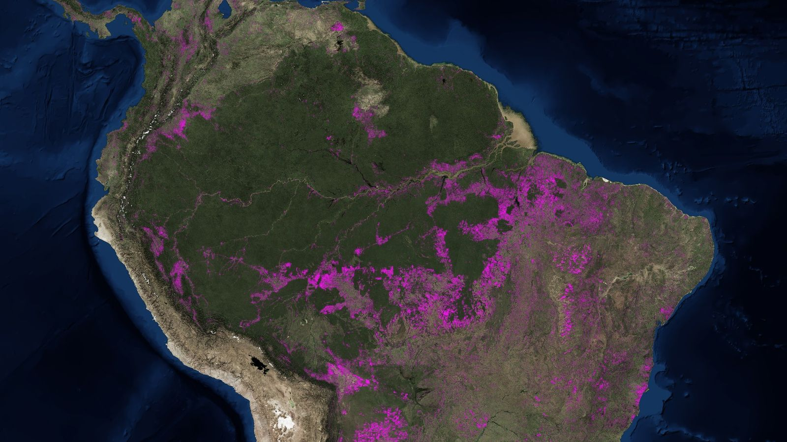 Sources : HANSEN / UMD / GOOGLE / USGS / NASA, Accessible via Global Forest Watch.
