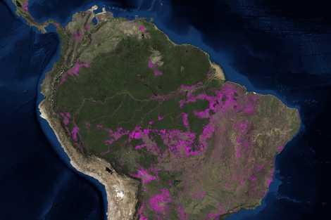 Carte Bresil Satellite.Le Monde En Cartes Les Hectares Perdus De La Foret Amazonienne