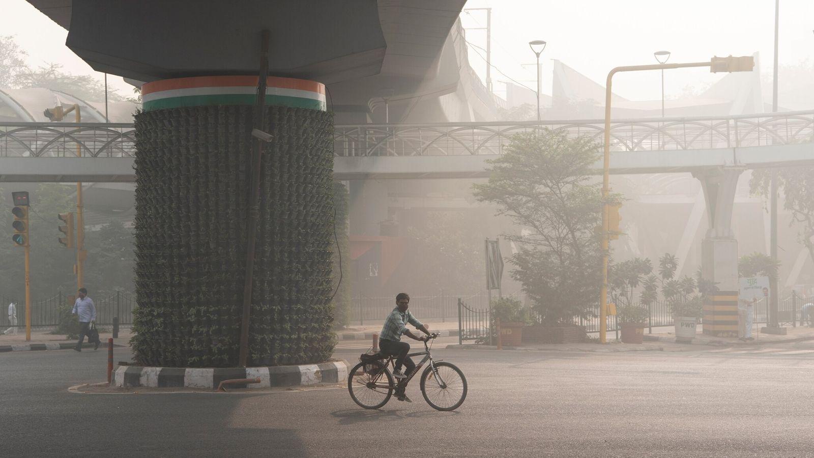 Près de Pragati Maidan à New Delhi en Inde, le brouillard de pollution matinal enveloppe les jardins verticaux ...