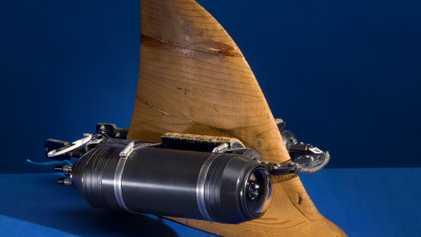 Cet appareil permet de photographier les espèces les plus inacessibles