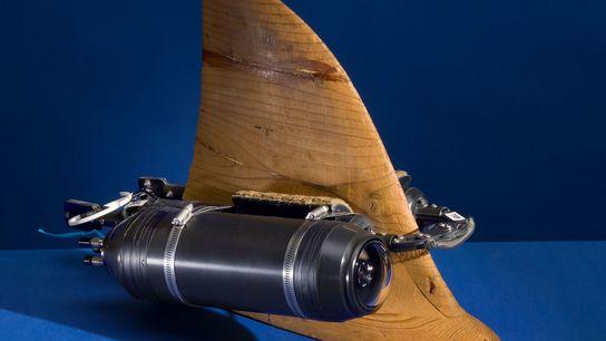 Construite sur mesure dans les locaux de National Geographic, cette Crittercam est conçue pour être attachée ...
