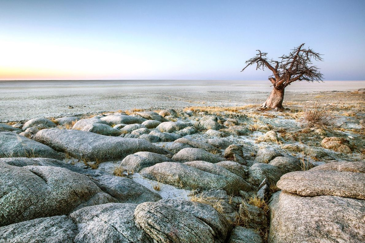 Ce qui était un lac il y a plusieurs millions d'années est maintenant le pan de ...