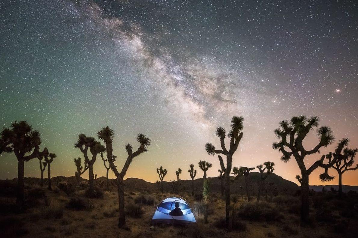 « L'endroit idéal pour contempler les étoiles, assis sous les arbres de Josué. » - Brandon ...