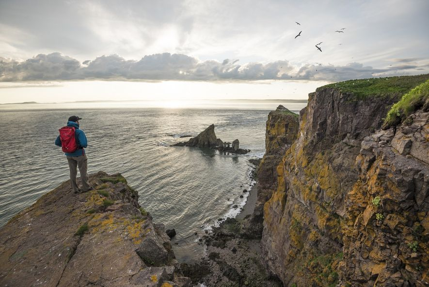 La randonnée de 12 km vers le cap Split longeant le sommet des falaises est ponctuée de panoramas uniques sur la baie de Fundy et de nombreux points d'observation de la faune sauvage.