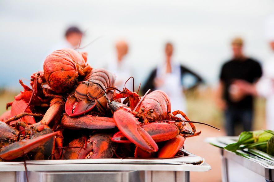 Organisé sur l'Île-du-Prince-Édouard dont les terres riches lui valent également le surnom d'« île de la gastronomie », le Fall Flavours Festival est le rêve de tout amoureux des fruits de mer. De grands chefs du Canada et d'ailleurs s'y retrouvent pour vous faire vivre des expériences culinaires inoubliables.