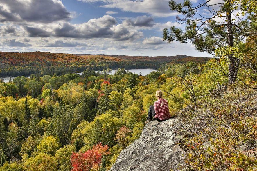 Les couleurs changeantes des espaces sauvages du Canada valent le détour : c'est l'une des plus jolies saisons pour explorer le Canada. Dans le parc Algonquin, la forêt se pare de son merveilleux manteau rouge et or.