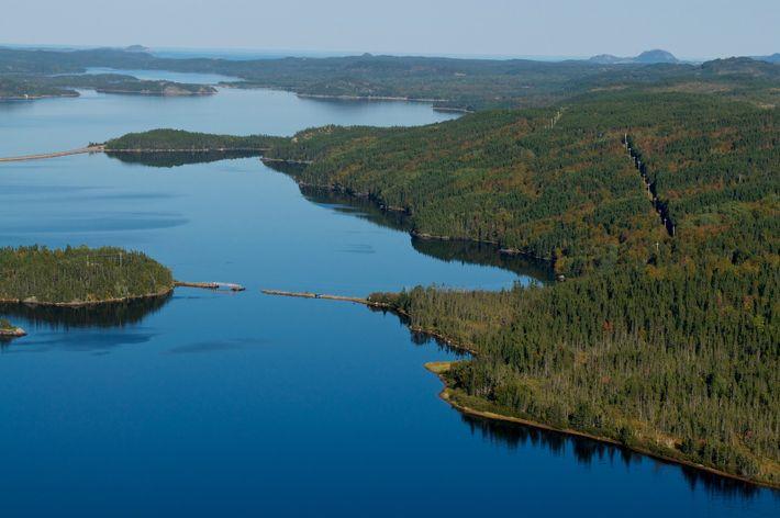 Le parc national Terra-Nova est un espace sauvage qui s'étend de l'intérieur des terres, où vous ...