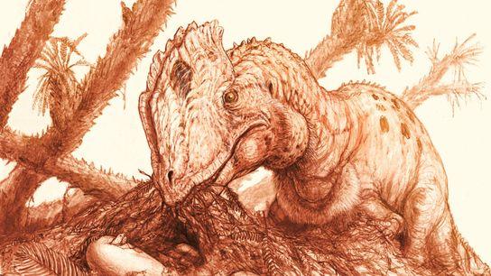 Une reconstitution montre un Dilophosaurus wetherilli adulte près d'une couvée d'œufs.