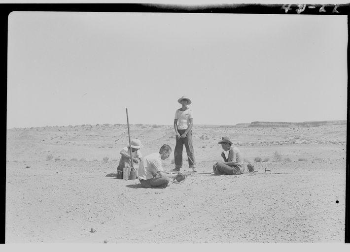 Cette photo a été prise pendant l'excavation d'un spécimen de Dilophosaurusen 1942 par les scientifiques de ...