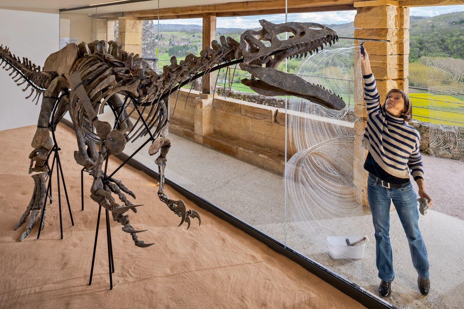 Dans les jardins de Marqueyssac (Dordogne), Stéphanie Angleys, chargée de communication, nettoie la vitrine d'un Allosaurus ...