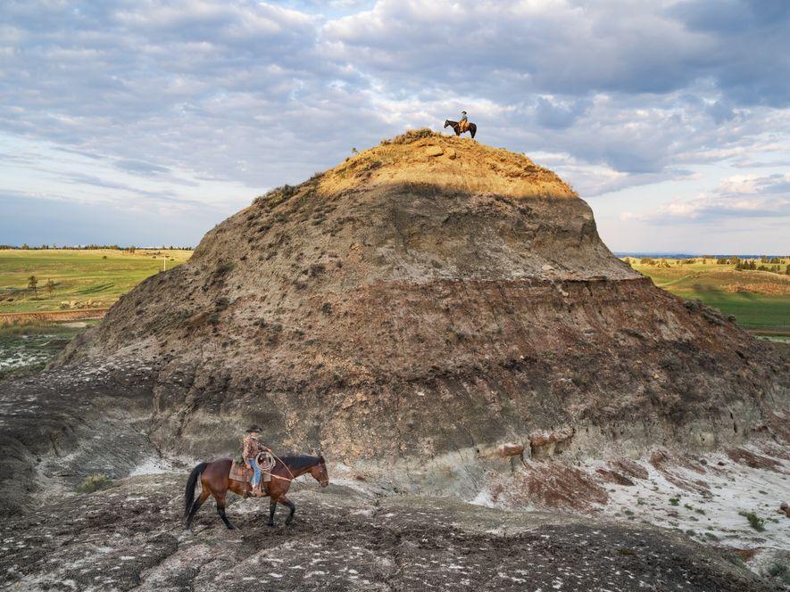 Surnommé le « cow-boy des dinosaures » dans certains cercles, l'éleveur Clayton Phipps (en haut) explore ...
