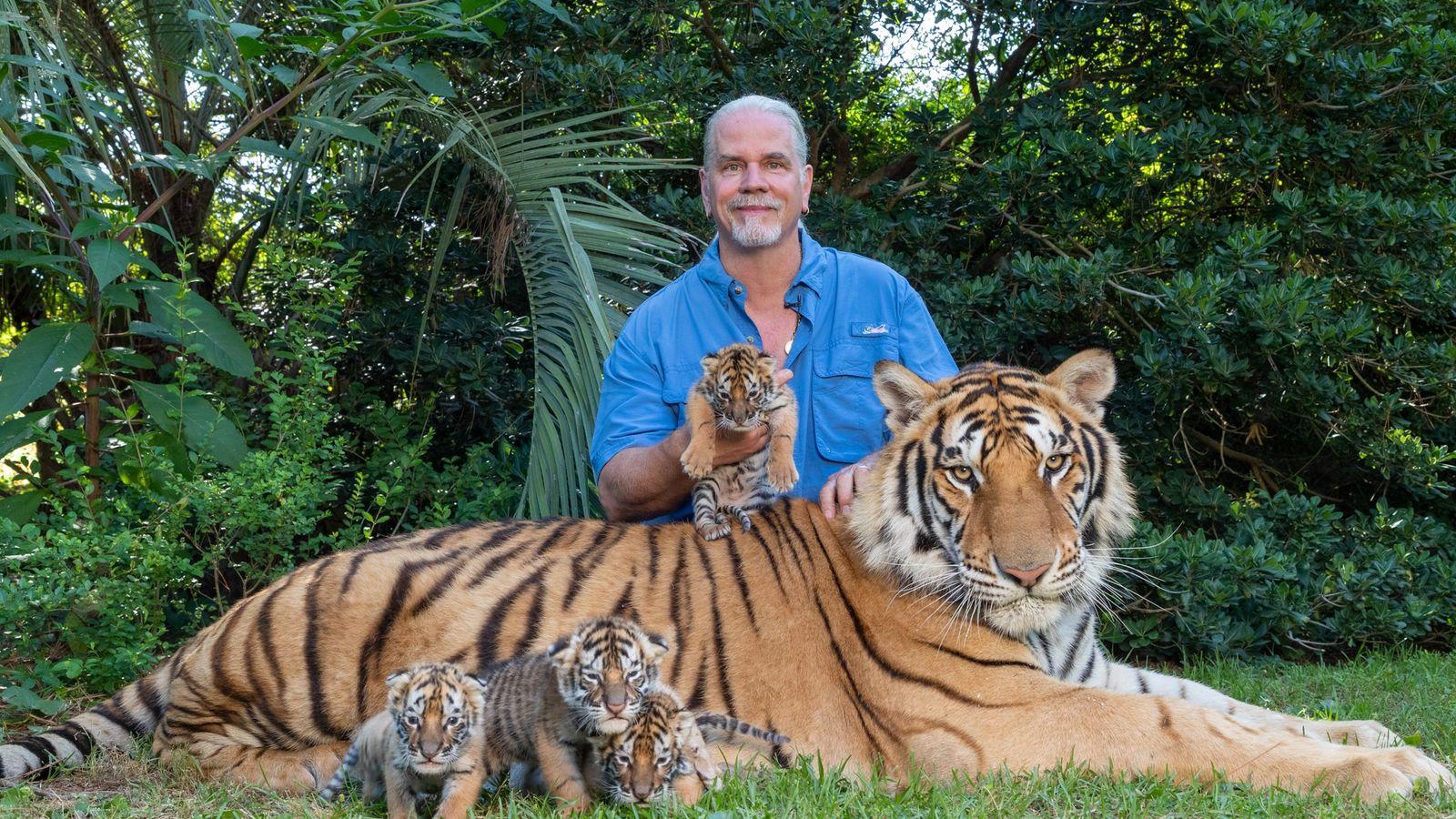 Bhagavan Antle, dit « Doc », prend la pose avec les tigres de son parc zoologique Myrtle Beach ...